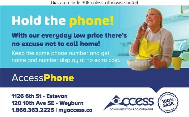 Access Communications - Telephone Companies Digital Ad