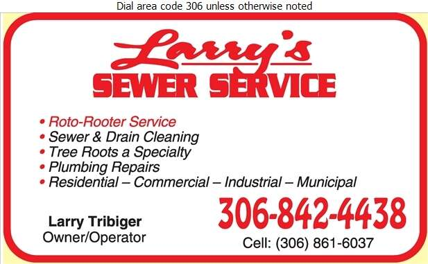 Larry's Sewer & Drain Cleaning Service - Plumbing Contractors Digital Ad