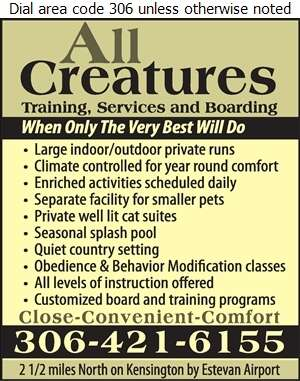 All Creatures - Kennels Digital Ad