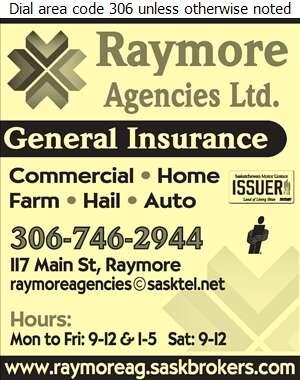 Raymore Agencies Ltd - Insurance Digital Ad