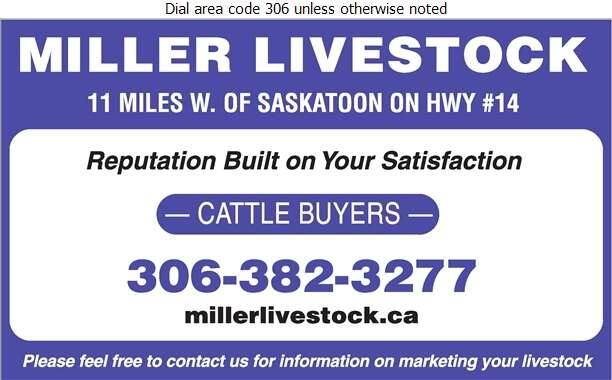 Miller Livestock Order/Buy Co Ltd (Located In The Saskatoon) - Livestock Dealers Digital Ad