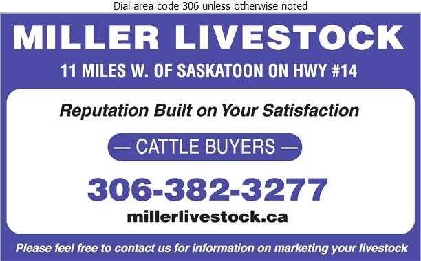 Miller Livestock Order/Buy Co Ltd - Livestock Dealers Digital Ad