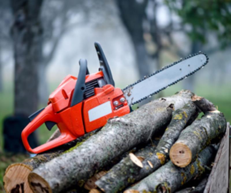 Schwinghammer's Tree Service - Firewood