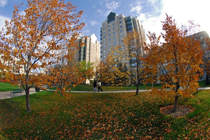 University Of Regina