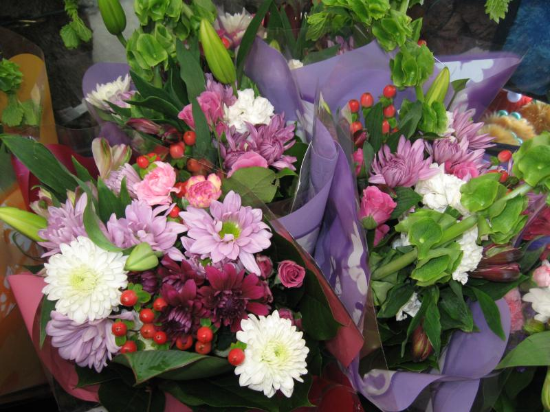 Saskatoon's Best Flowers