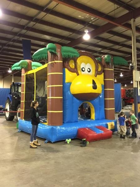 DJ's Amusement Rides - Jungle Fun Bouncer