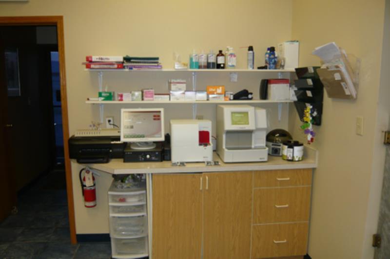 Associate Pet Hospital